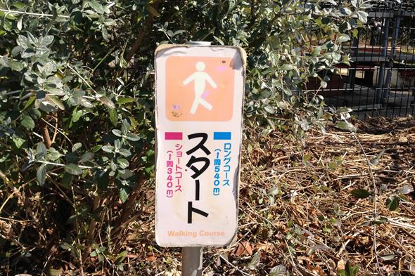 jog_river