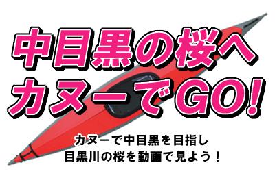 中目黒の桜へカヌーでGO!