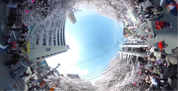 桜2014 360度カメラ