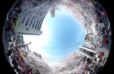 """【桜2014】中目黒の桜を満開の時に""""360度カメラ""""で撮影してみました。"""